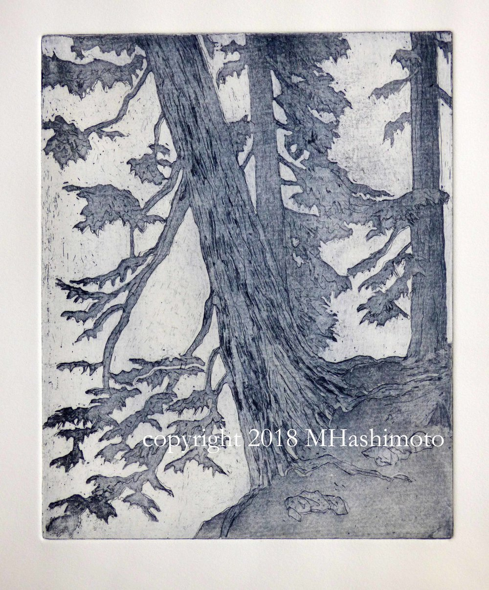 Hemlock, Pacific Crest Trail, $95