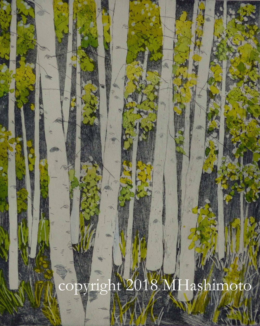 Aspens, hand-tinted with watercolor, $105
