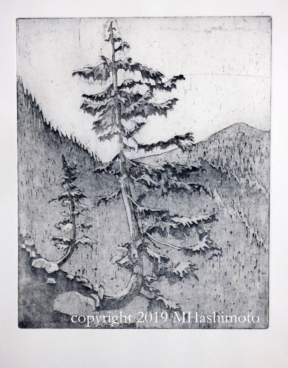 Mountain Hemlocks 2, $95