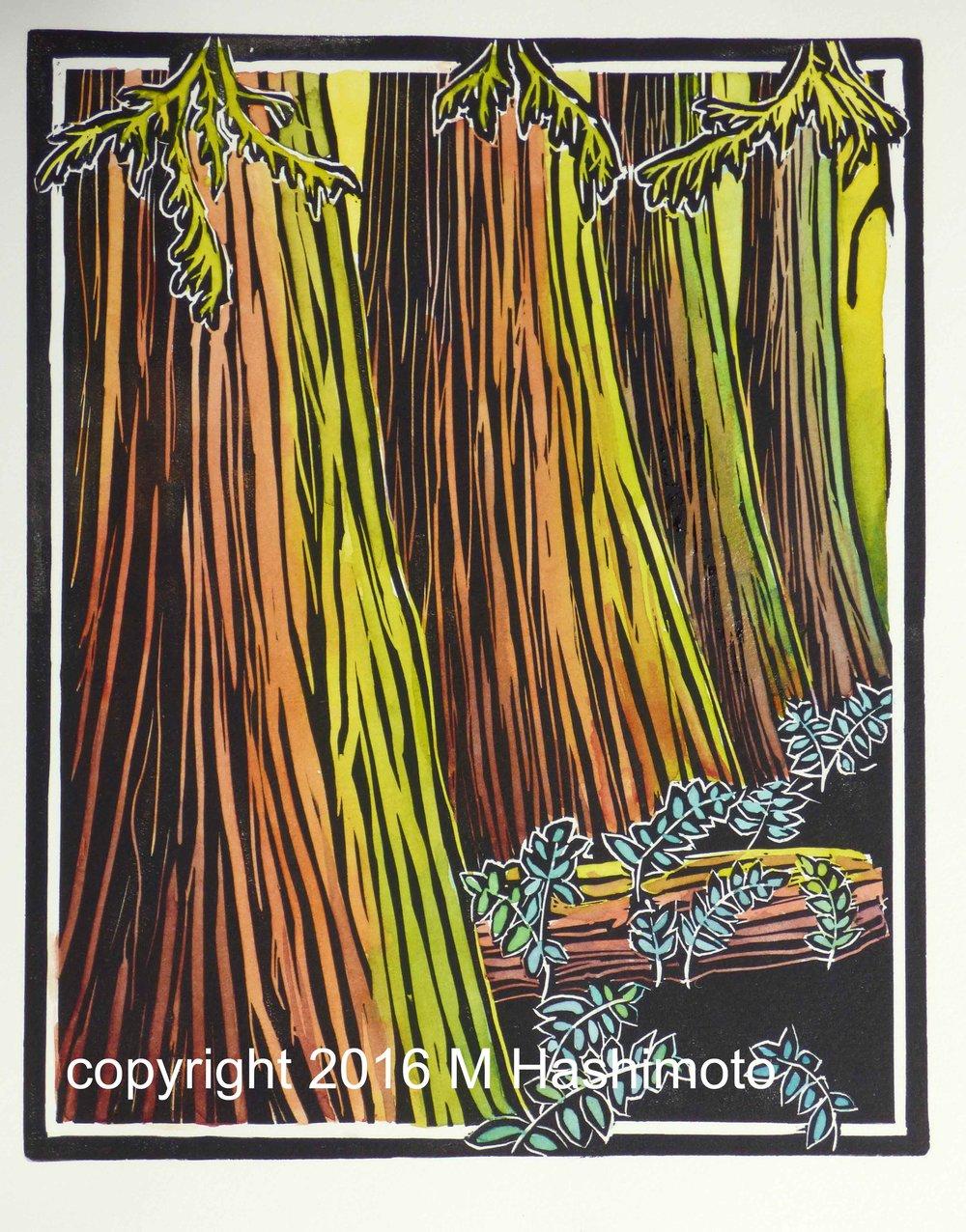 Trail of the Cedars Colonnade $115
