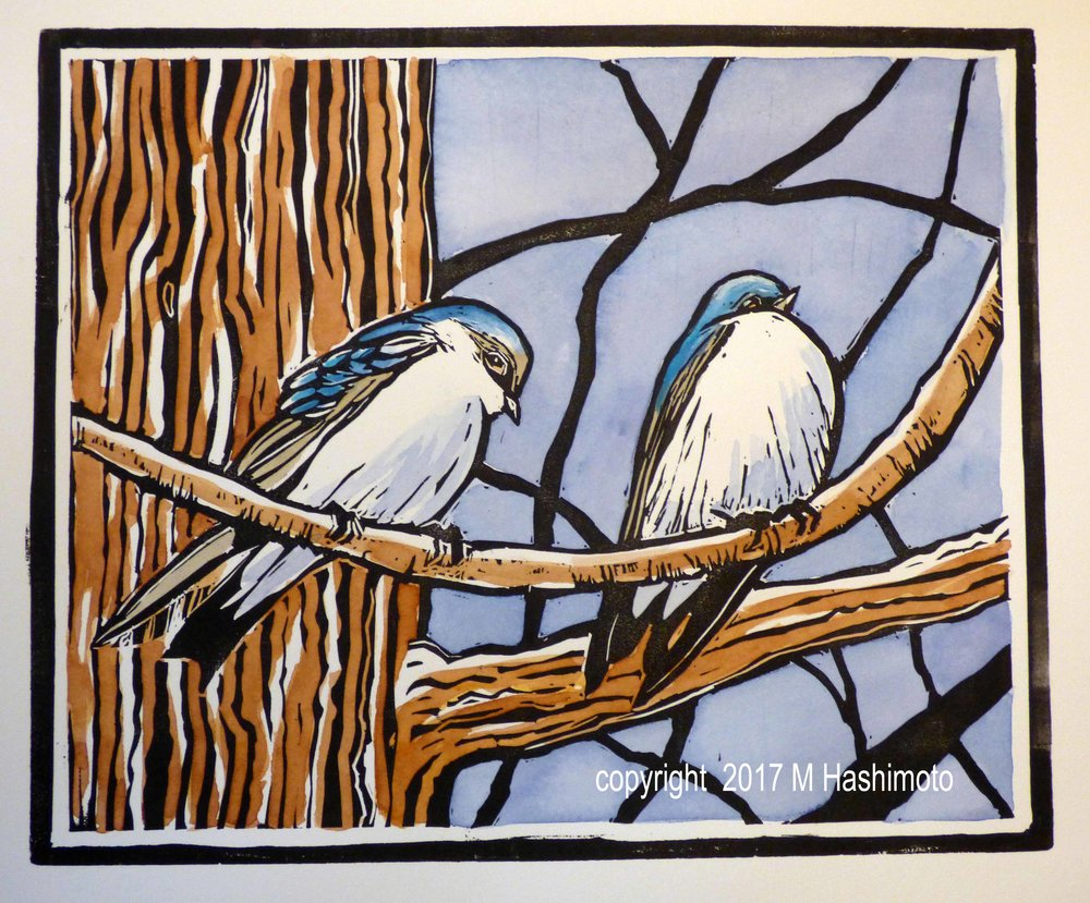 Tree Swallows in a Pine, $115