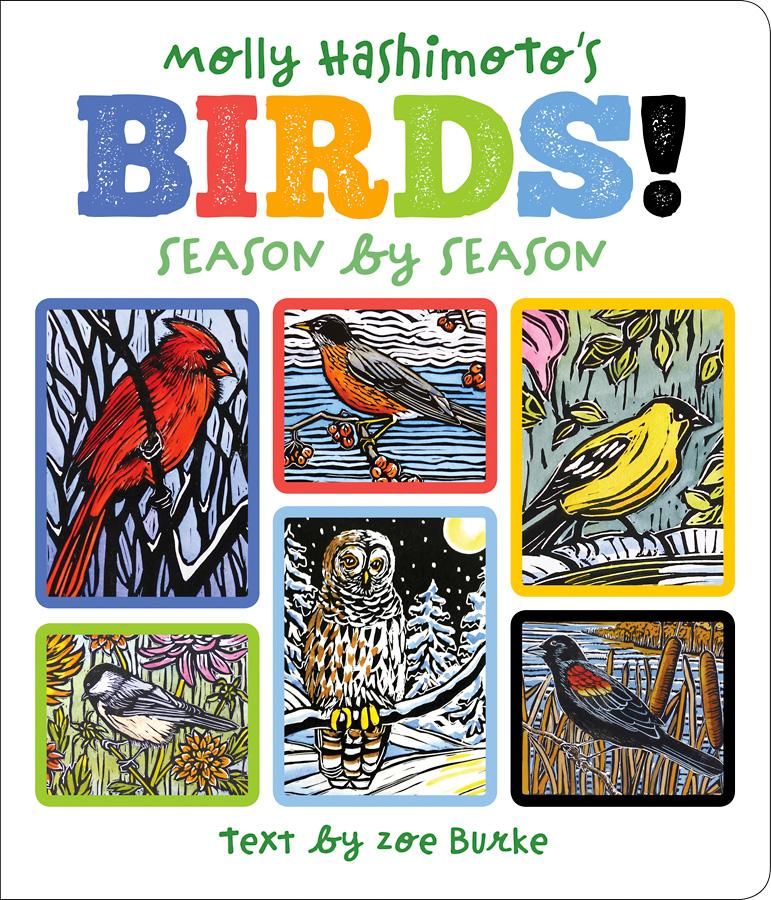 Birds season by season.jpg