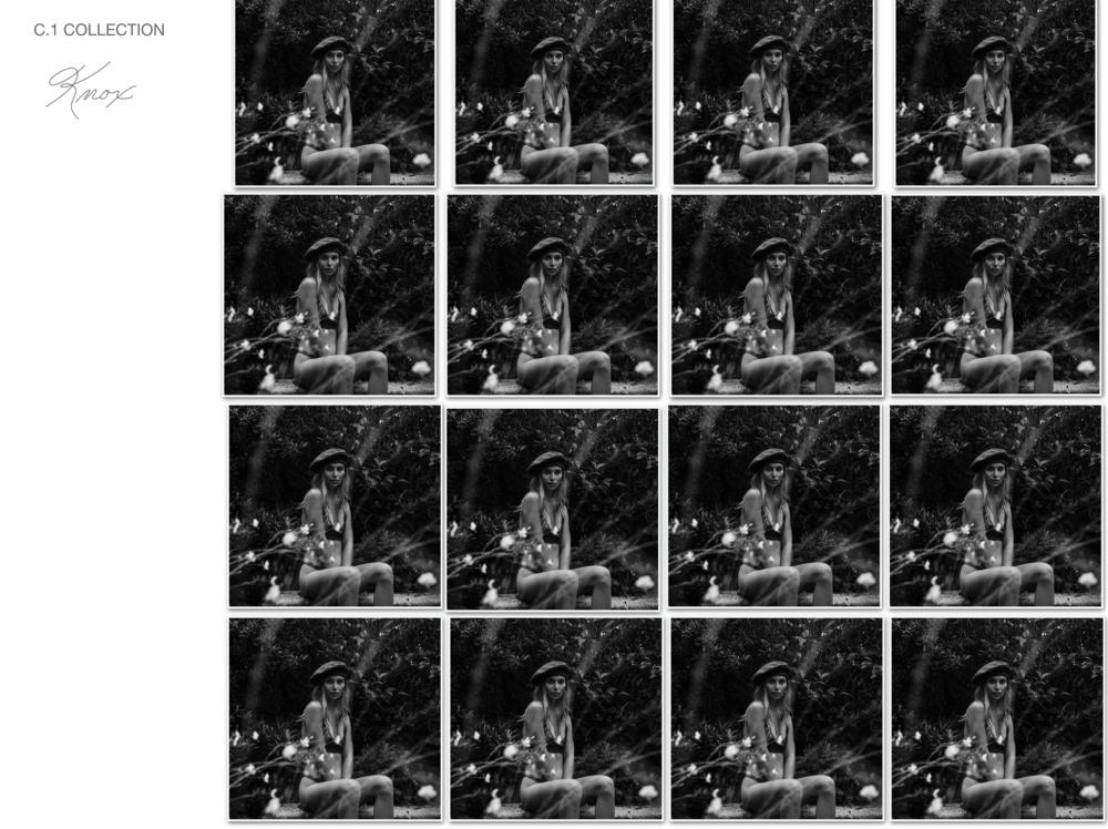 Screen Shot 2019-01-03 at 1.52.16 PM.PNG