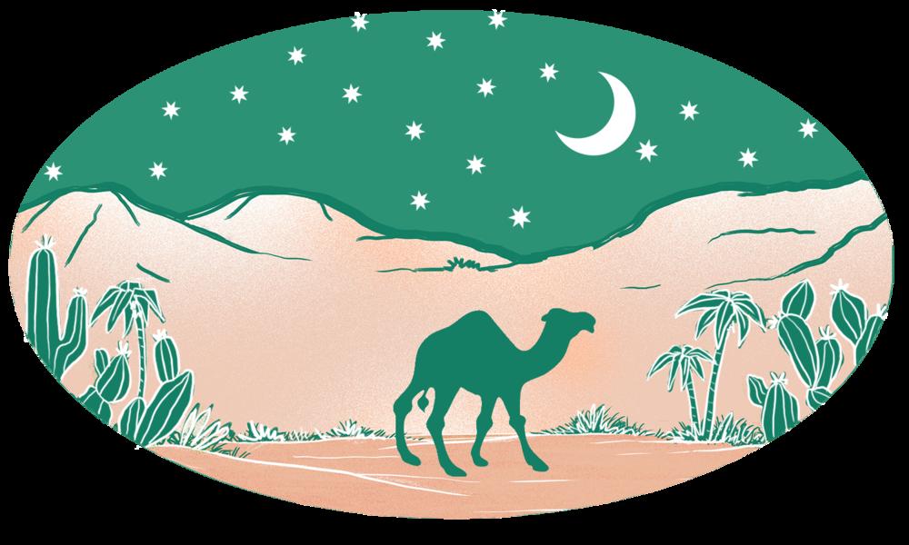 desert night (2).png
