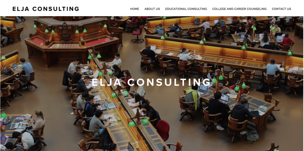 Elja Consulting Website