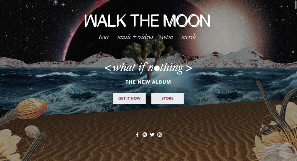 Walk-the-Moon-Musician-Website.png