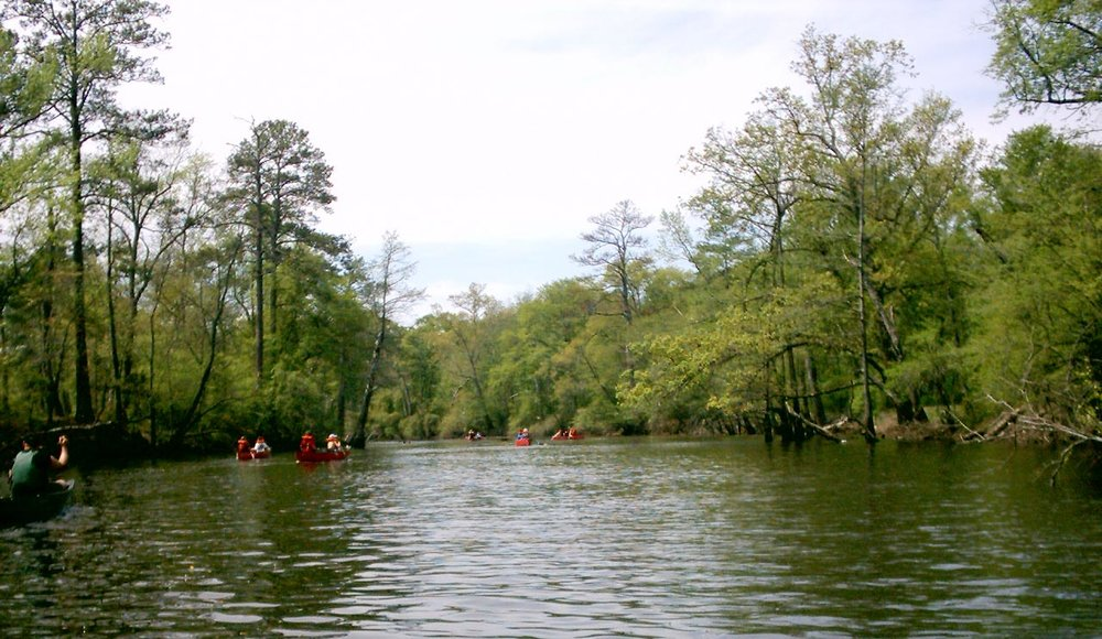 Boy Scouts canoeing on the Blackwater River, Virginia. Image via  Wikipedia