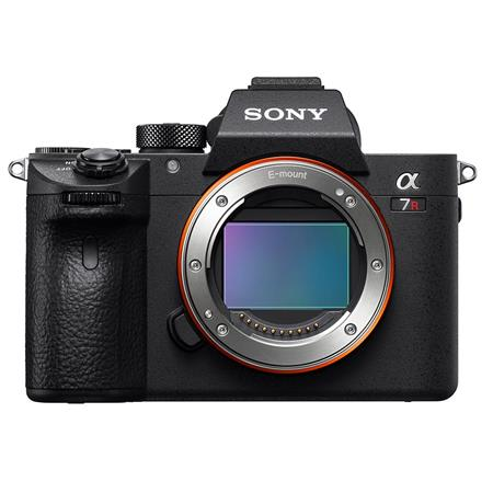 Sony a7R lll - I love shooting with this full frame camera. The white balance is spectacular!