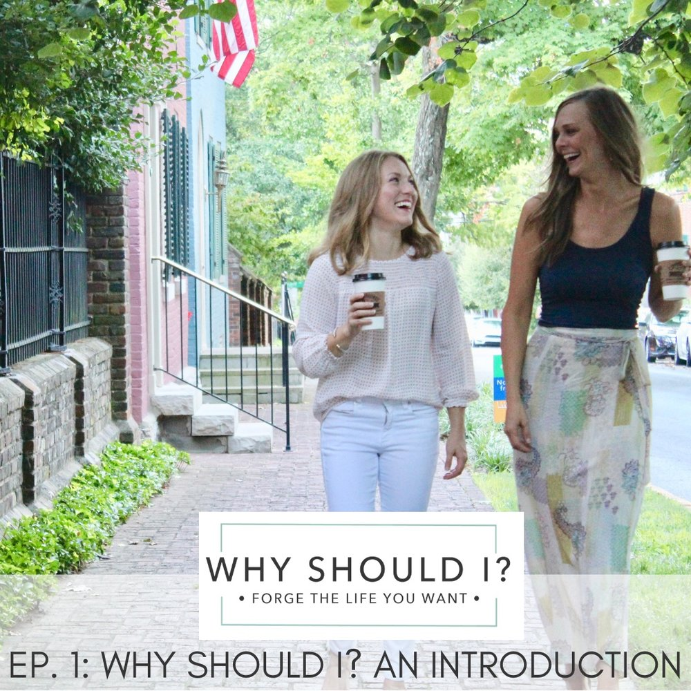 Why Should I?  An Introduction to the Podcast