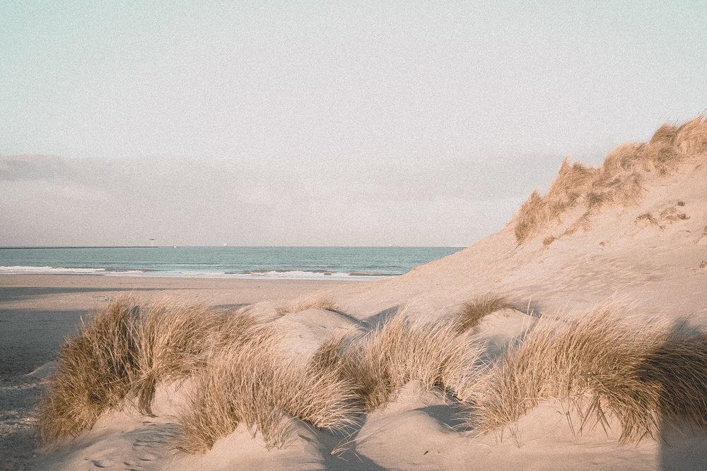 Vintage Beach Life Pack