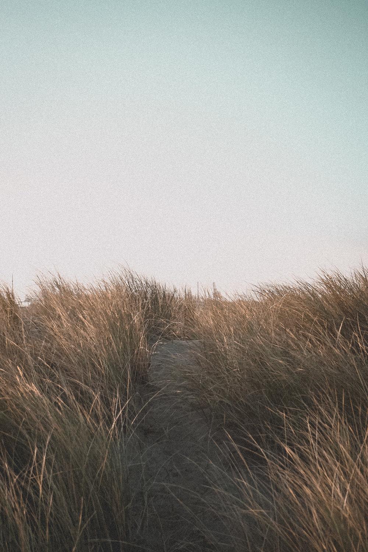 Vintage Beach Life by paperheartpolaroids (5).jpg