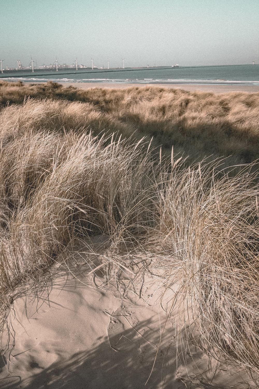 Vintage Beach Life by paperheartpolaroids (7).jpg