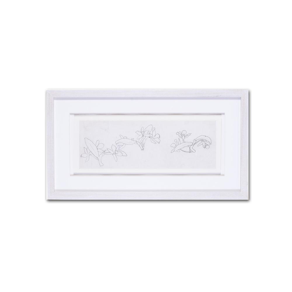 Evelyn De Morgan      Narcissi      pencil on paper    5.1/2 x 15 in. (14 x 38 cm.)    £1,400