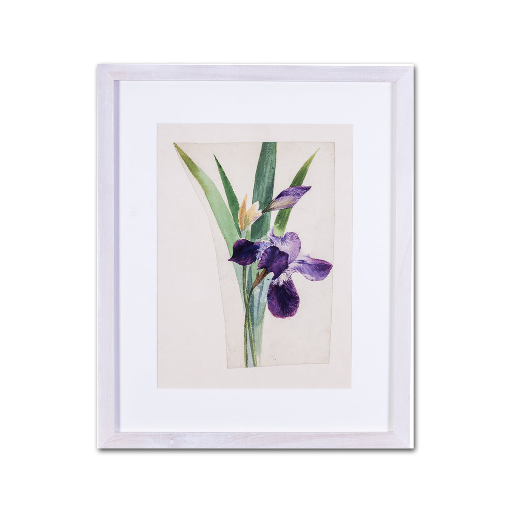 Evelyn De Morgan      Irises     watercolour on paper stabilised on card    11 x 8 in. (28 x 20.3 cm.) (an irregular cut of paper)     £1,100