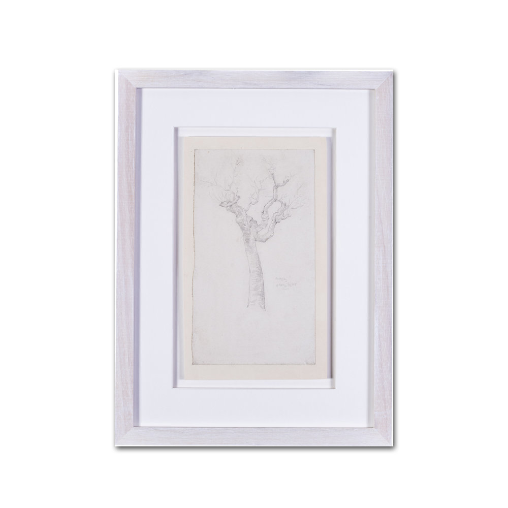 Evelyn De Morgan      A twisted tree study     pencil on paper    9.3/4 x 5.1/2 in. (24.8 x 14 cm.)     £900