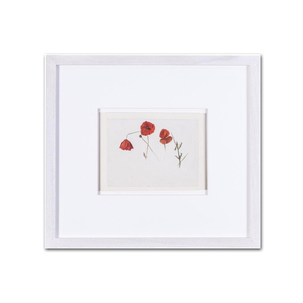 Evelyn De Morgan      Poppies     watercolour on paper    5.1/2 x 7.1/2 in. (14 x 20 cm.)     £900