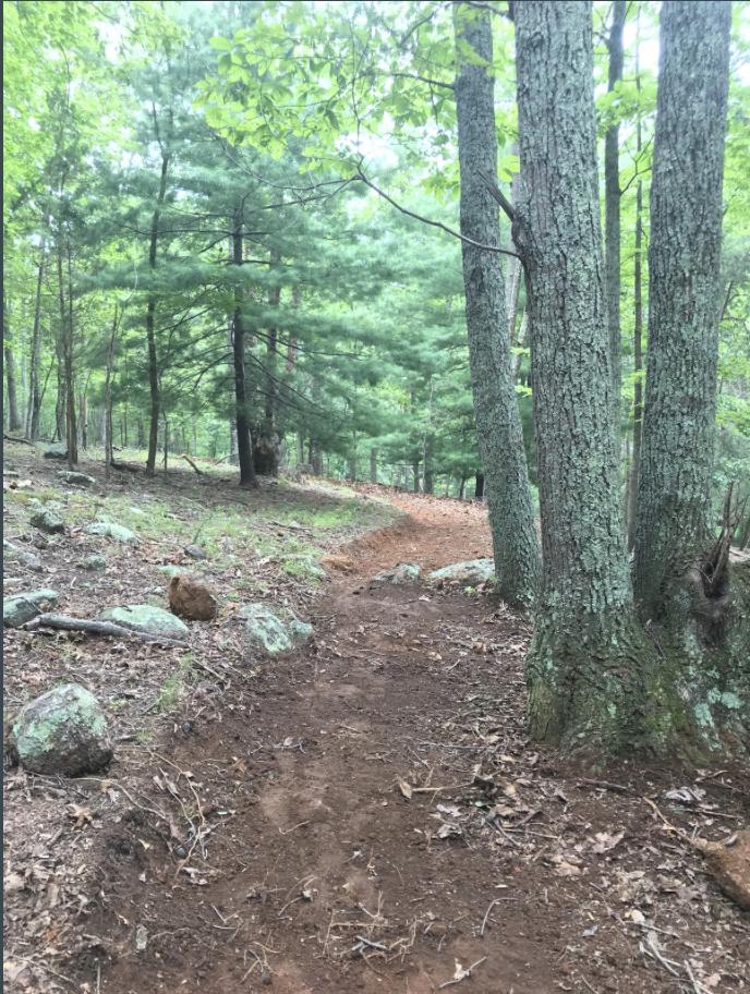 Private Trail Network