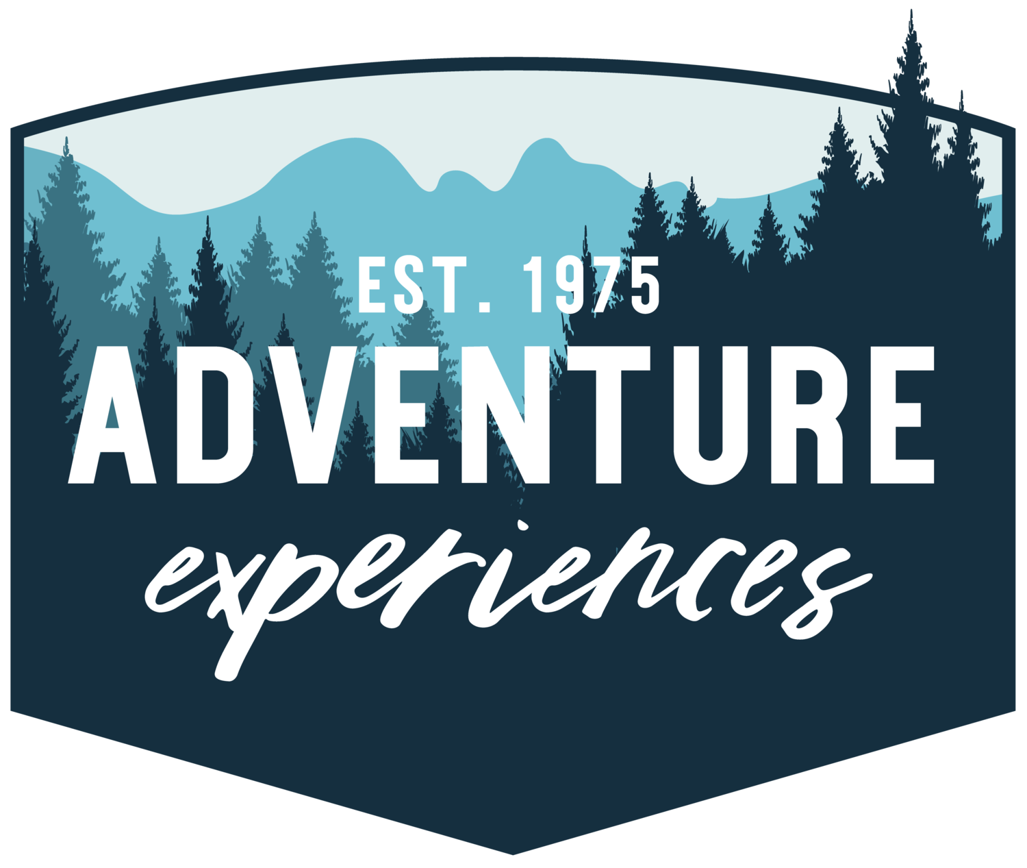 Adventure Experiences: A Full Service Challenge Course Company