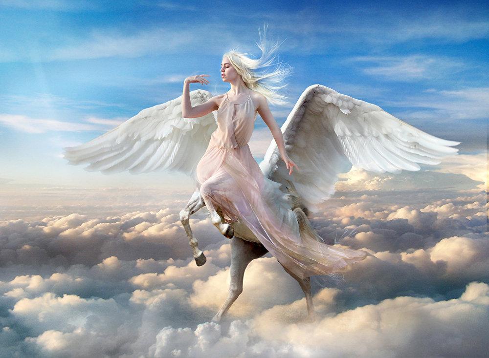 Pegasus_Sky_Clouds_Wings_473392.jpg