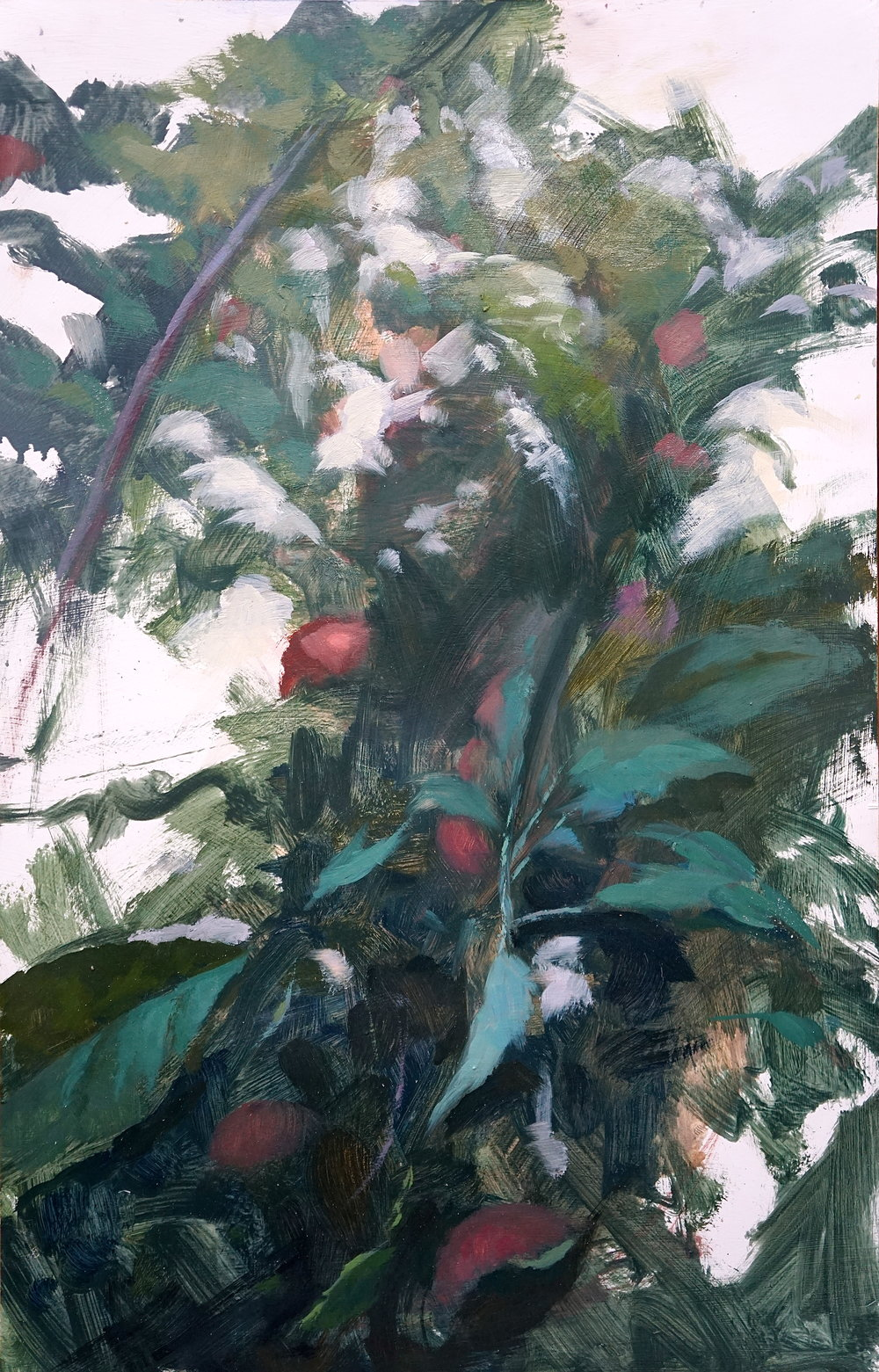 Orchard V