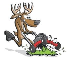 Lawn buck.jpg