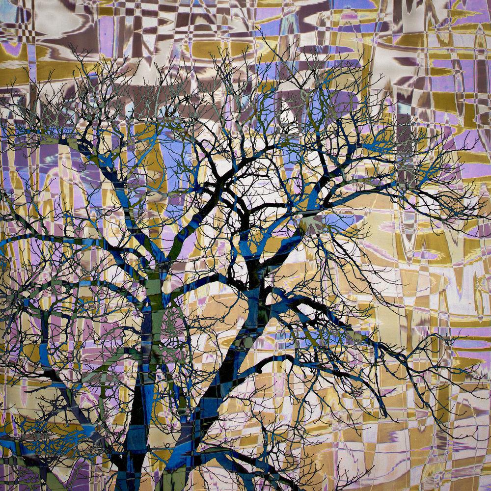 Tree Mosaic II