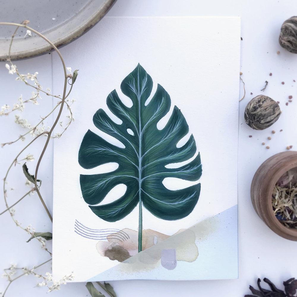 Girikos Thelma from Botanic garden, Herbarium - Mix media   2018