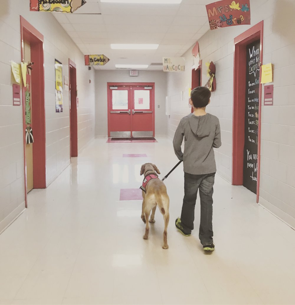 walking in hall with foxy.JPG