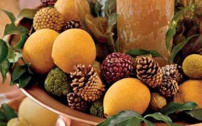 orange-pinecones.jpg