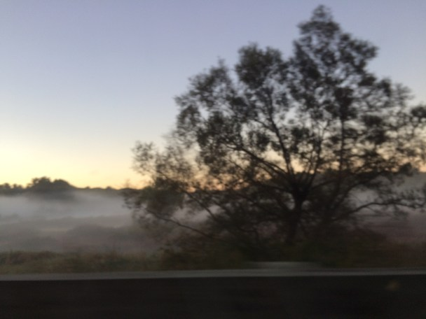 Dawn and fog