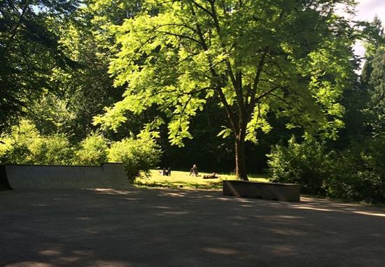 mini west linn skatepark