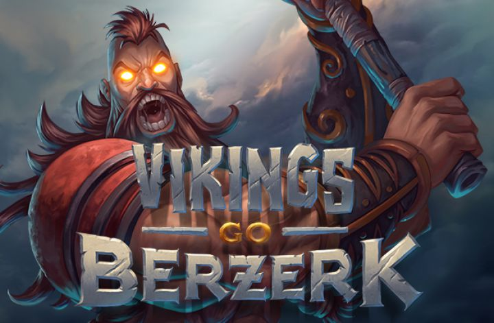 Vikings Go Berzerk Recension.jpg