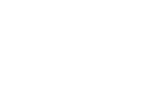 The Association CEO Handbook