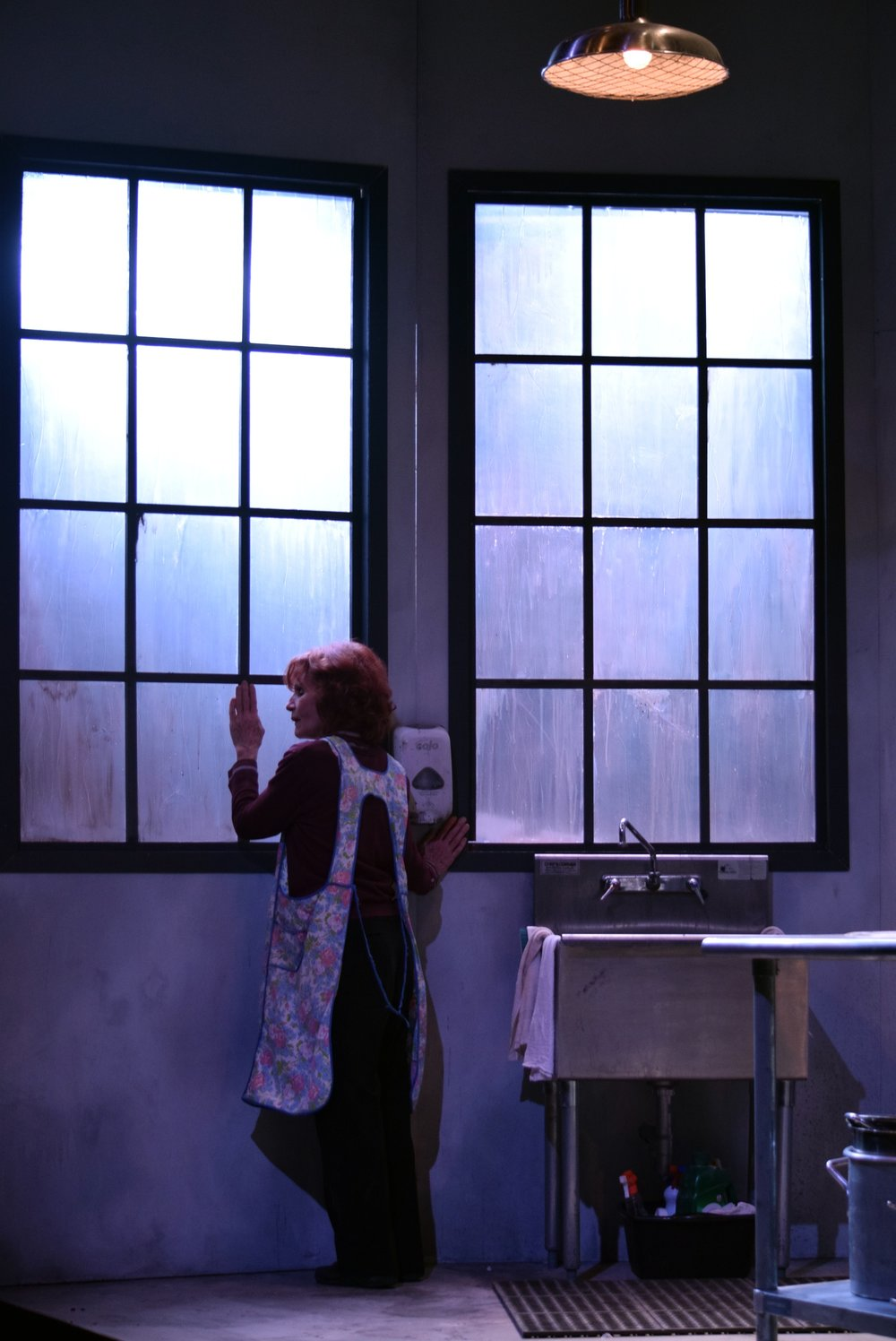 Apples in Winter   at Centenary Stage Company, Hackettstown, NJ, directed by Mikaela Kafka and featuring Colleen Smith-Wallnau. Photo by Chris Young