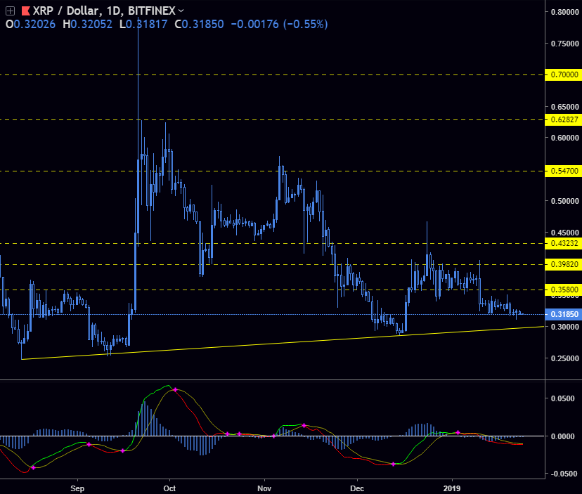 XRP / USD - Looking for a bottom to enter the position.