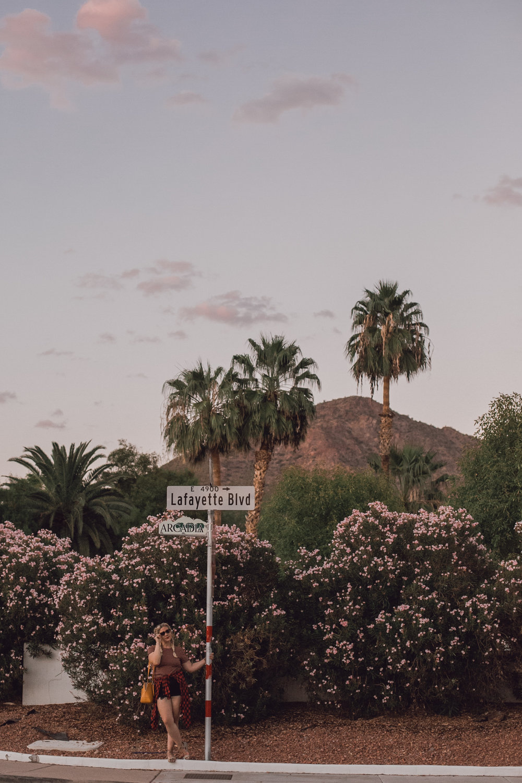 The garden solarias, rachel smak, american eagle, desert photo shoot-1.jpeg