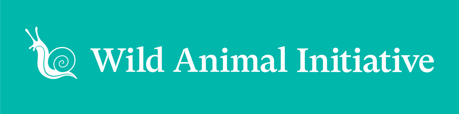 Opinion: Uncertainty in Wild Animal Welfare is Not an