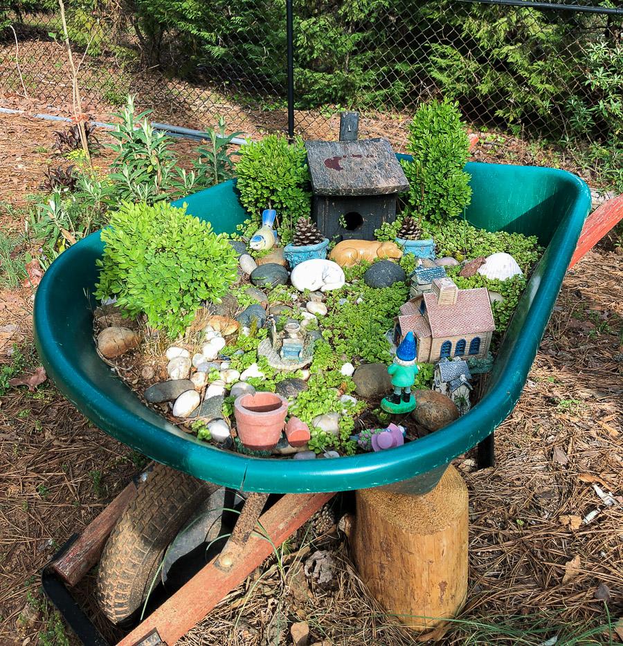 Cavan-garden-wheelbarrow-fairy garden (1 of 1).jpg