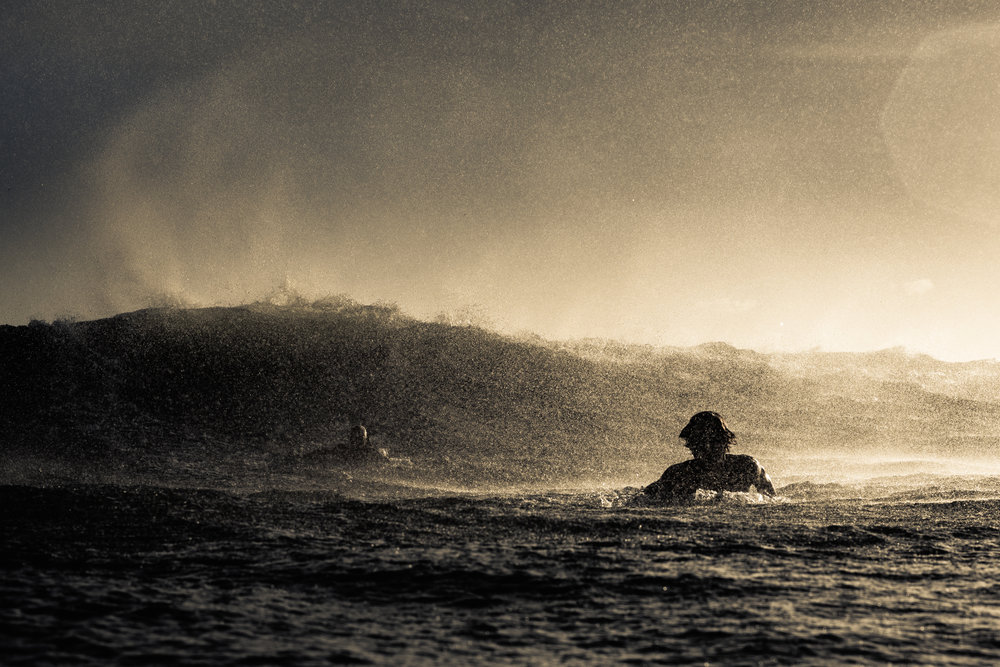 Noosa Surf