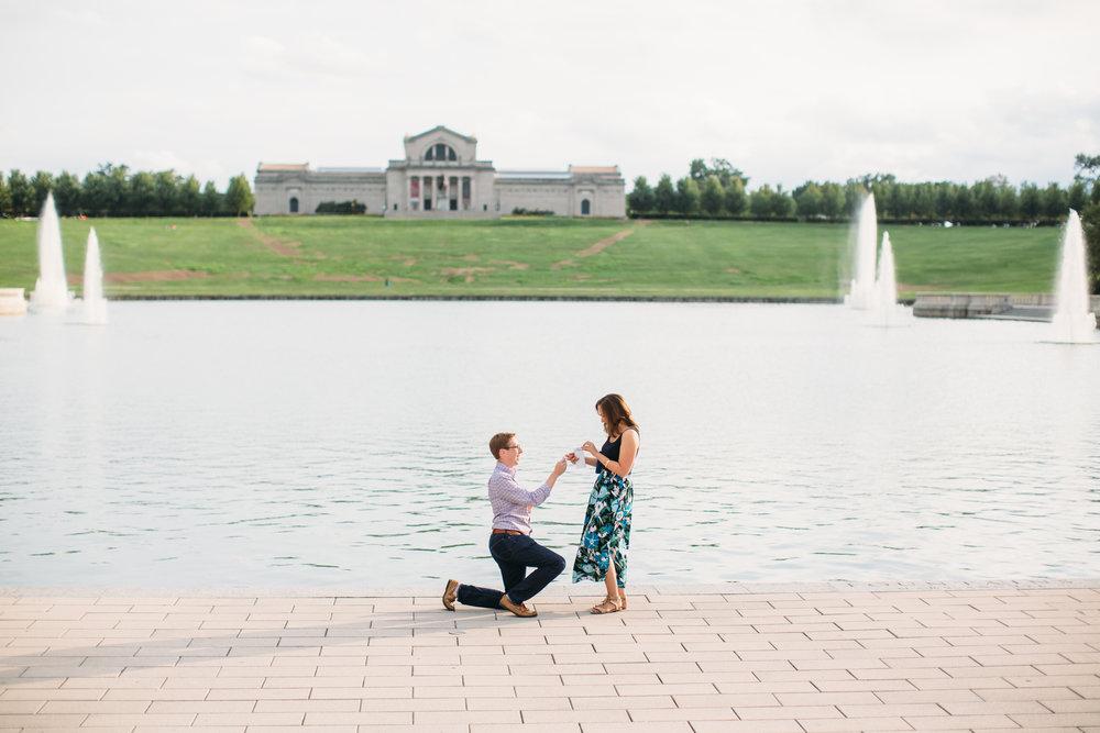 Forest Park St Louis Proposal