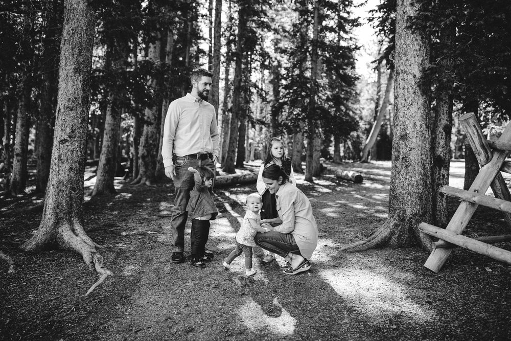 Mt Evans Colorado Family photographer