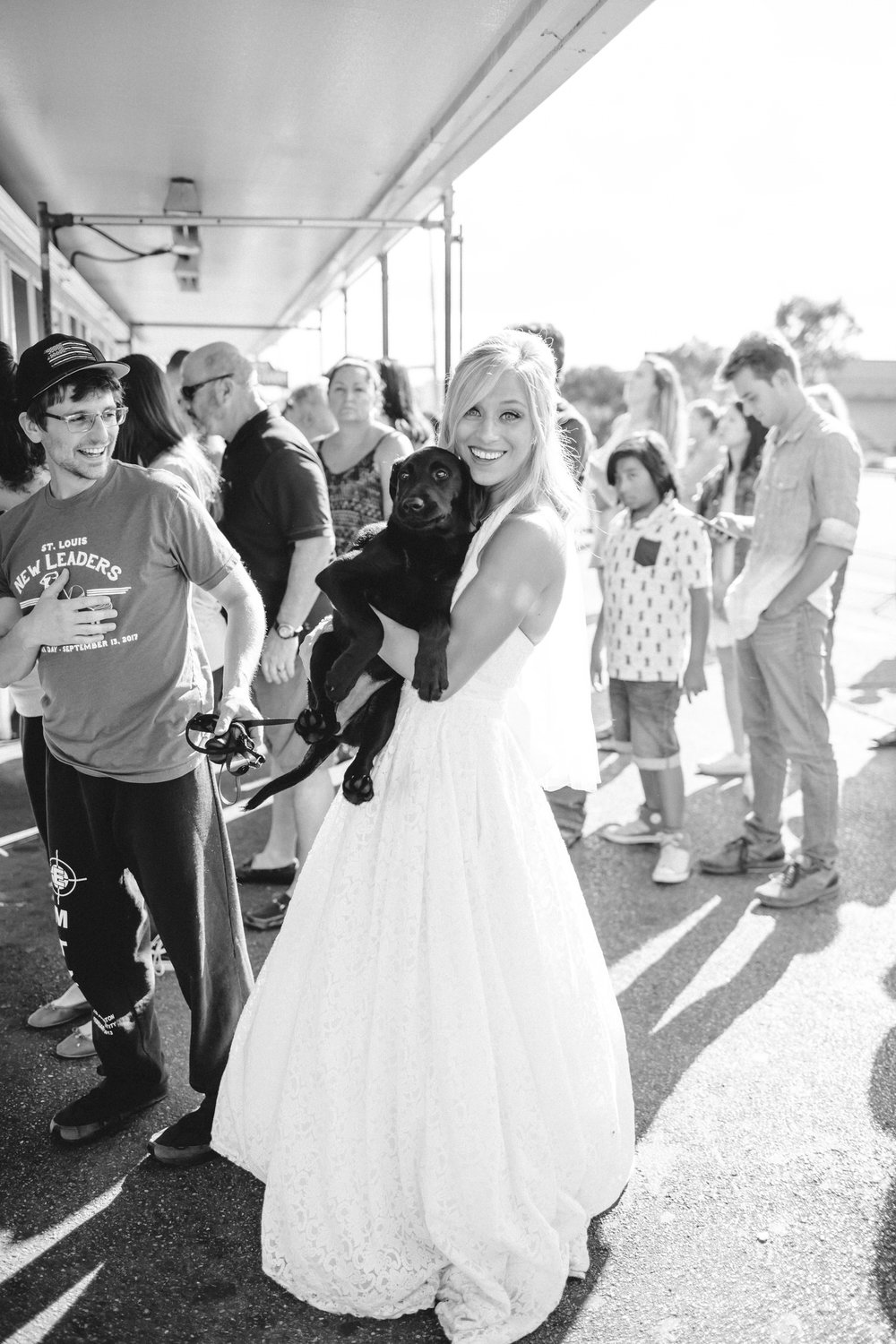 Bride at Ted Drewes with Puppy. St Louis MIssouri