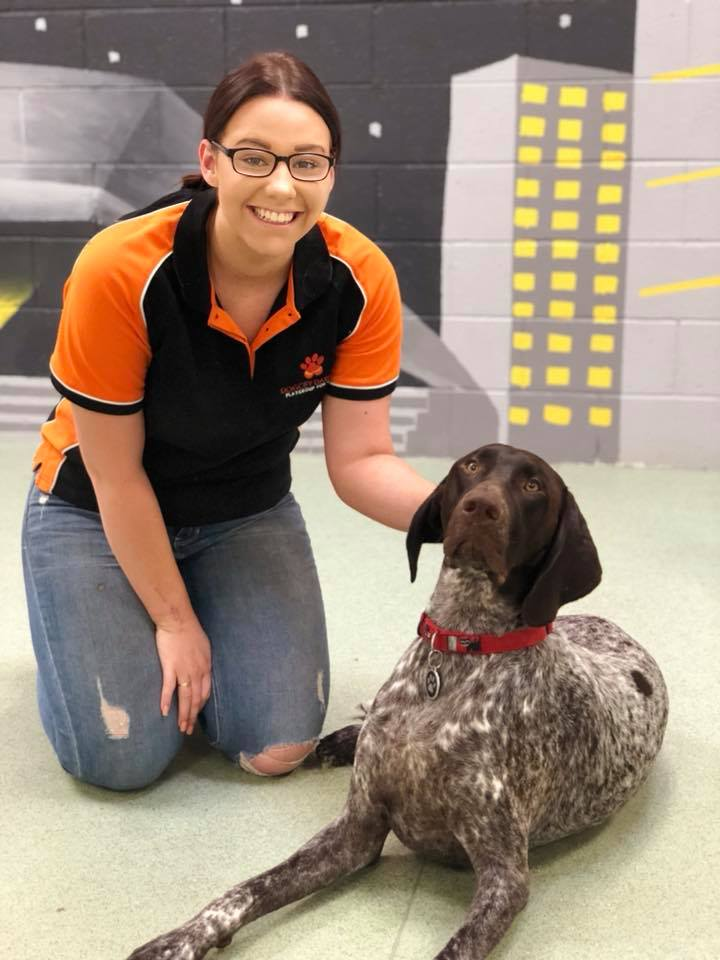 BETH : CEO (WEST)  With more energy and enthusiasm than even we know what to do with sometimes, Beth is every dog's DREAM! Don't be surprised if you see Beth dancing and singing with the dogs; its a daily occurrence and our furry friends love the excitement.