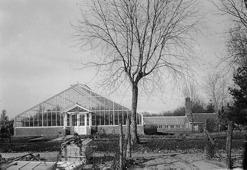 1915_greenhouse_James-J.-Hill-81-.jpeg