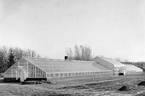 1915greenhouse_James-J.-Hill-81-.jpeg