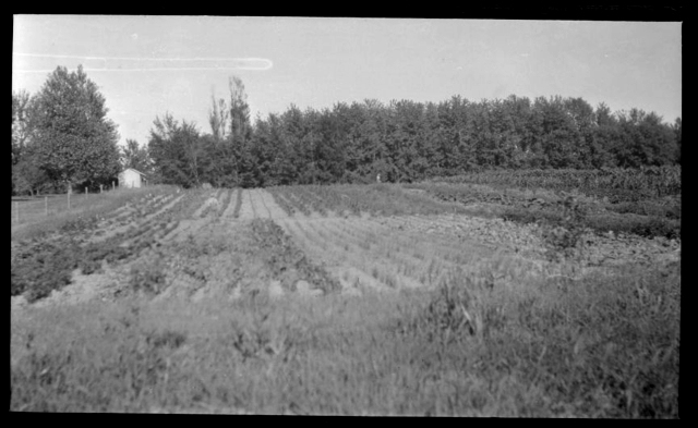 1917_Louis-W.-Hill-6764-.jpeg