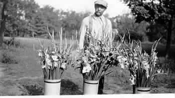 flowersgrownatfarmin1929_Louis-W.-Hill-1663-.jpeg
