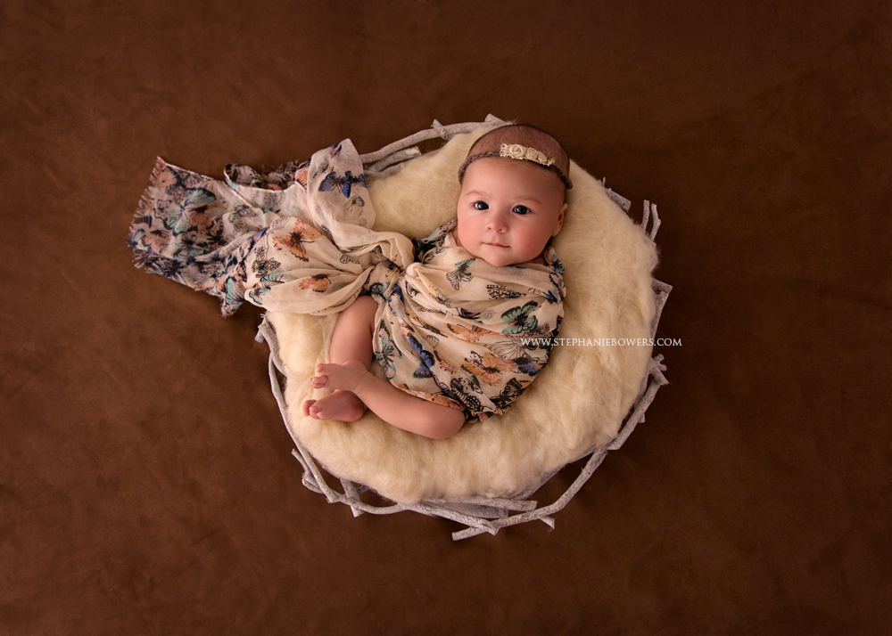Brisbane Newborn Photography