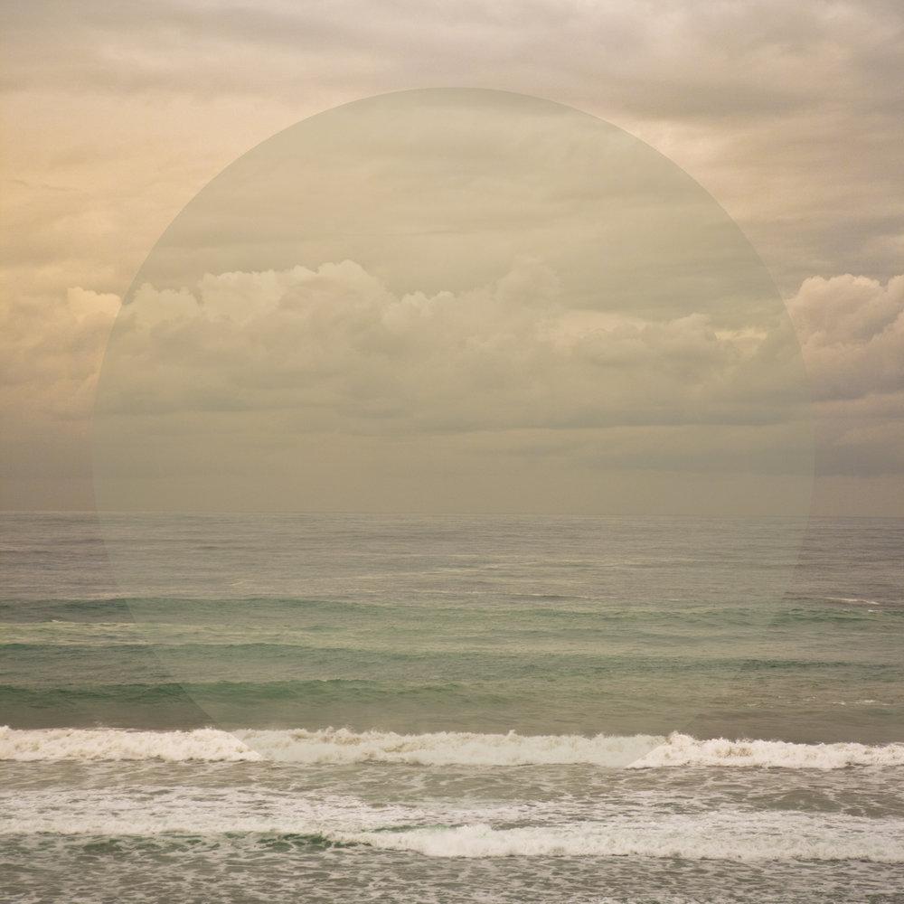 Grey Ocean Olive, 2013