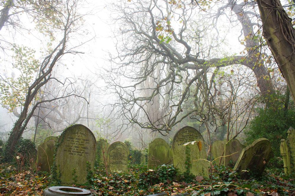 tre-fog-headstones.jpg